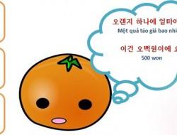 Một số câu giao tiếp cơ bản tiếng Hàn 1