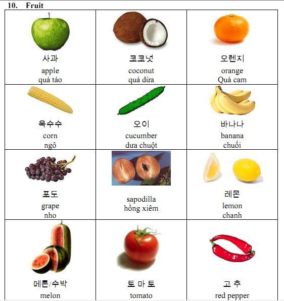 Học tiếng Hàn theo chủ đề